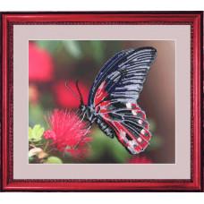 103 Бабочка. Butterfly. Набор для вышивания бисером