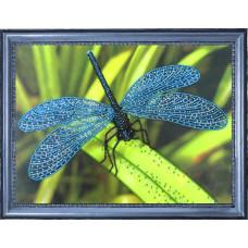 105 Стрекоза. Butterfly. Набор для вышивания бисером