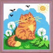 A66 Рудий кіт. Чарівниця. Канва з нанесеним малюнком