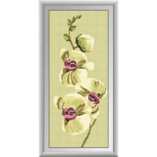20004 Нежность орхидеи-2. Dream Art. Набор алмазной мозаики (круглые камни, полная)