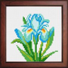 N1035 Блакитний ірис. Orchidea. Набір для вишивання нитками на канві з нанесеним малюнком