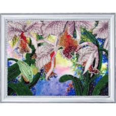 230 Сяйво орхідей. Butterfly. Набір для вишивання бісером