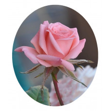 РТ130064б Троянда. Папертоль. Набір картини з паперу