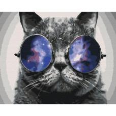 BS29637 Котик на Маями. Brushme. Картина по номерам