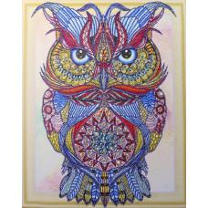 HZ013 Різнобарвна сова. DA. Набір алмазної мозаїки (стрази)